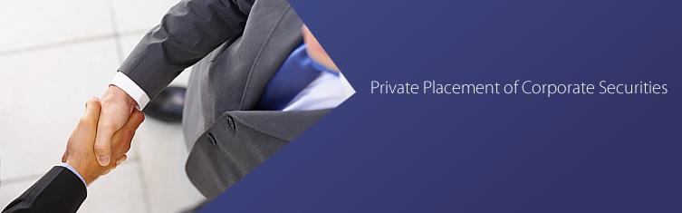 Private Placement of Corporate Securities